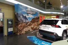 Фотозоны для Toyota RAV4